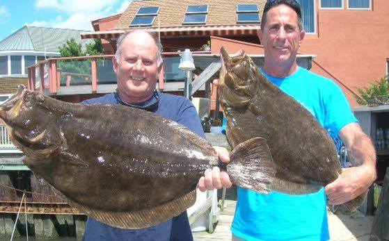 2018 Summer Flounder And Sea Bass In Atlantic City Rules  Regs - Acprimetime-8637